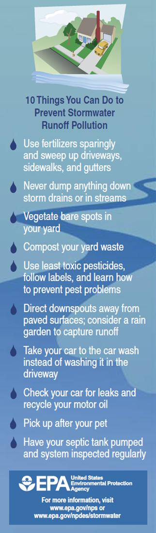 10 things you can do to prevent stormwater runoff pollution